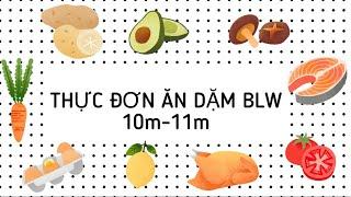 [ĂN DẶM BLW] Thực đơn ăn dặm của Nemo 10m-11m