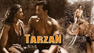 Tarzan X Shame Of Jane Full Movie Best Facts and Story | Nikita | Rosa Caracciolo