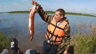 река Белая   рыбалка в троллинг   Щука на 4кг