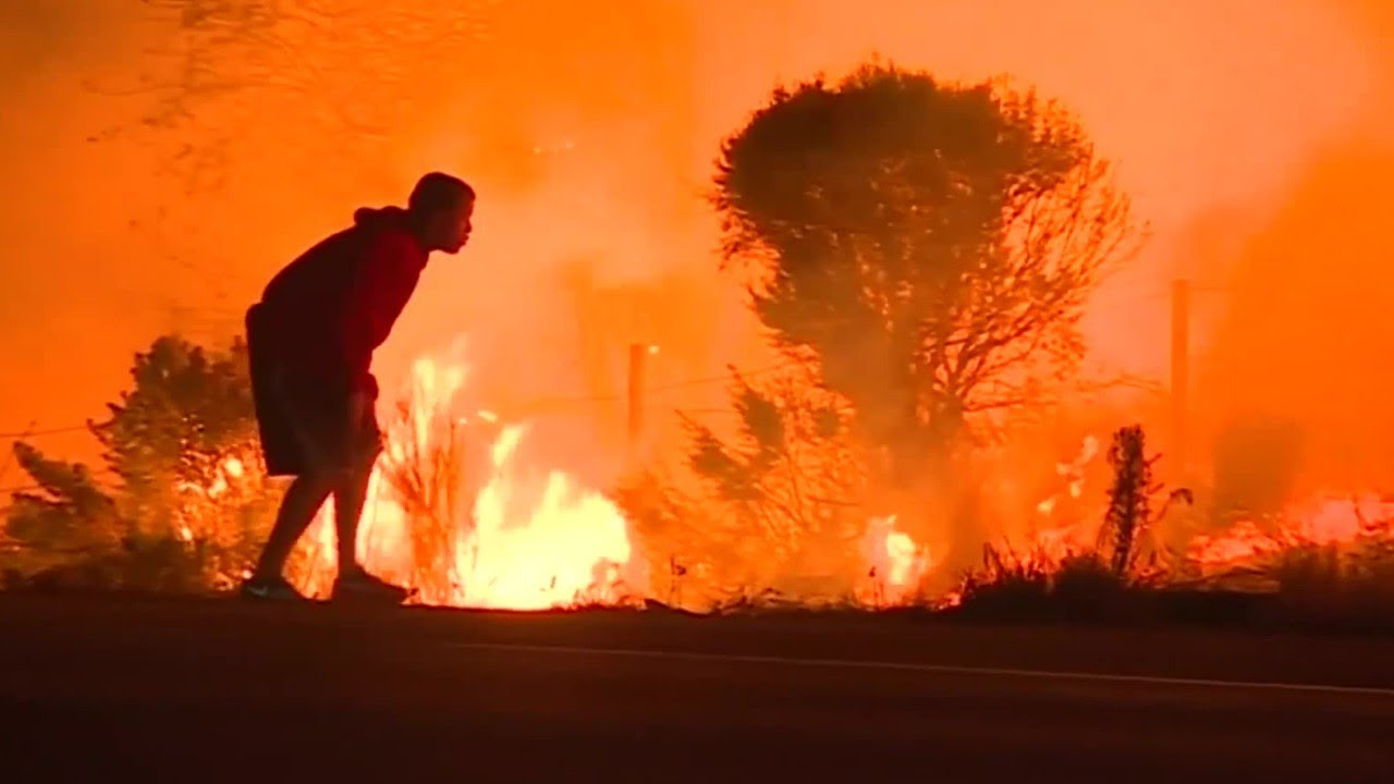 Video Of Man Rescuing Rabbit From Fire Goes Viral