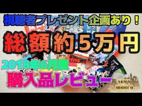 【総額約5万円!】ºoº東京ディズニーリゾート35周年グッズなどの購入品をレビュー!ºoº東京ディズニーリゾート購入品紹介2018年6月度ºoº東京ディズニーランド/TDR