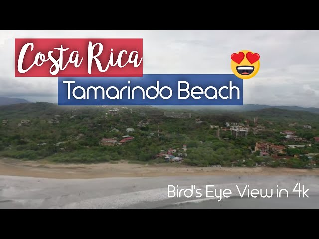 Relaxing Bird's Eye View of Tamarindo Beach, Costa Rica