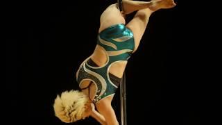 WILD CAT SIPC(Seoul International Poledance Championships) 2017 Int...