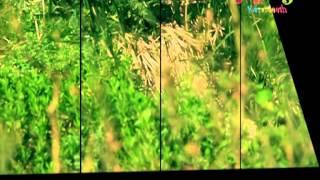 اصطفاك المتين - عبدالقادر صباهي | قناة كراميش Karameesh Tv
