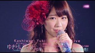 http://yukiring.jp/ 柏木由紀3rd ソロライブ 横浜アリーナ ダイジェス...