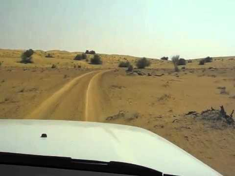 Landscapes of the Dubai Desert Conservation Reserve and driving through them