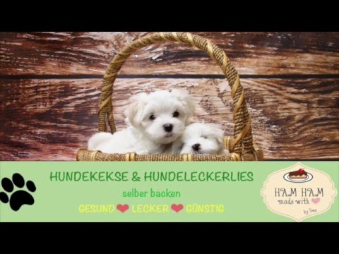 hundekekse selber backen die ges ndesten rezepte f r deinen hund youtube. Black Bedroom Furniture Sets. Home Design Ideas