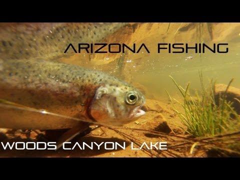 Woods Canyon Lake Trout Fishing Arizona (HD)