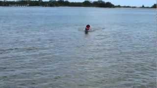 Doggie Beach June 18 2012 035.mov