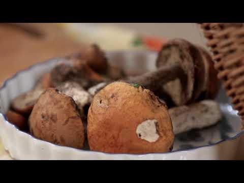 Как варить грибы подосиновики