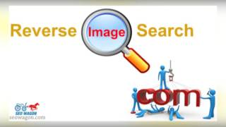 Best Photo cropper and editor With Reverse image search - SEOWAGON.COM