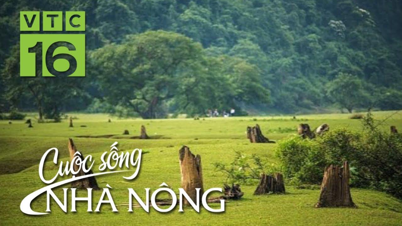Khám phá thảo nguyên Đồng Lâm đẹp như thiên đường | CSNN 410 | VTC16