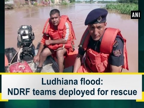 Ludhiana Flood: NDRF Teams Deployed For Rescue | ANI News