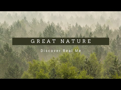 Great Nature (Feat. Nature Sound)