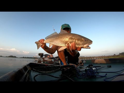 THESE DOCKS ALWAYS PRODUCE! RED DRUM FISHING  NC