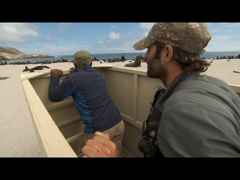 NOAA Fisheries 2014: All Hands On Deck