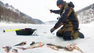ЗАПРЕЩЁННОЙ СНАСТЬЮ Рыбалка не по правилам КОПЧЕНИЕ ПО ГОРЯЧЕМУ ДОМА