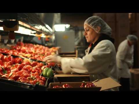 Company Culture - NatureFresh Farms