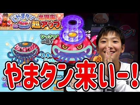 【妖怪ウォッチぷにぷに】子供がCやまタン狙って初の争奪戦ガシャにチャレンジ! Yo-kai Watch