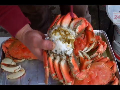 How To Catch Crabs And Eat Crabs In The Holiday