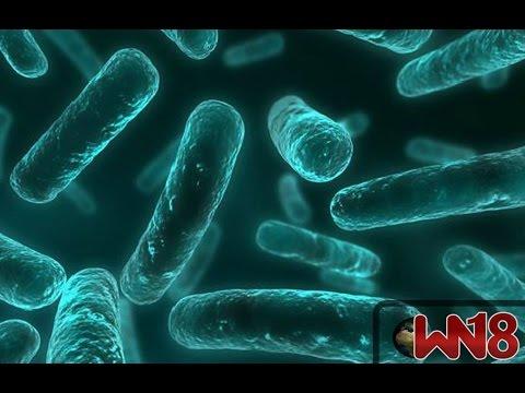 Antibiotic resistance: World on cusp of 'post-antibiotic era' - Wn18 News