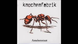 Watch Knochenfabrik Ameisenstaat video