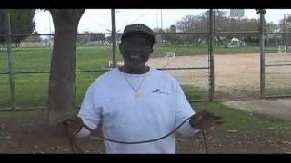 """Expert Dog Trainer: Larry Hill's Imprinting Tips """"basic Handling Skills"""""""