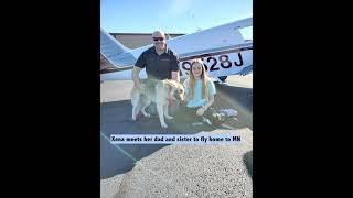 Senior Shepherd Xena's Journey from a kill shelter in Texas to her forever family in Minnesota.
