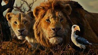 Le Roi Lion -