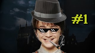 Harry Potter and the Chamber of Banter Part 1 MLG Harry Potter