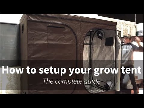 How To Set Up Your Grow Tent Kit