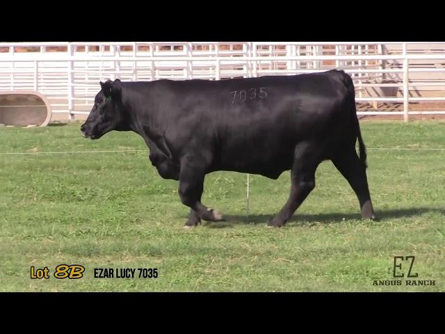 EZ Angus Ranch Lot 8B