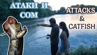 Спининг Риболов: Атаки і Сом/ Spinning Fishing: Attacks & Catfish/ Spinnfischen: Attacken und Wels