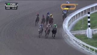 RACE REPLAY: 2017 Fountain of Youth Stakes Featuring Gunnevera