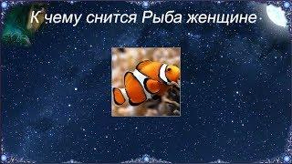 К чему снится Рыба женщине (Сонник)