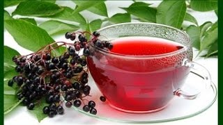 Elderberry is not just for Cold and Flu it has Much More Medicinal Uses