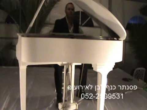 תוספת נגן פסנתר כנף לבן לאירועים 0522-509531 - YouTube NZ-07