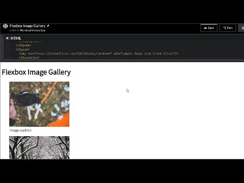 Design a Flexbox Image Gallery on CodePen The Markup
