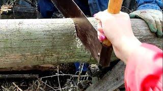 Деревня. Как успеть всё за один день. Чем покрасить деревянный забор Сезон открыт Мухтар и Бакс.