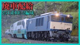 【スーパービュー踊り子】251系RE−2編成廃車配給!涙雨のなか中央線を回送