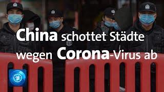 Corona-Virus in China: Zahl der Toten und Infizierten steigt weiter