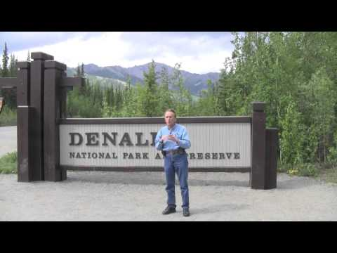 Travel Guide Road Trip to Alaska Denali National Park