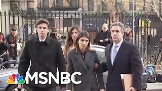 Bush Lawyer: Michael Cohen Jailed Means Trump's 'Goose Is Cooked' | The Beat With Ari Melber | MSNBC