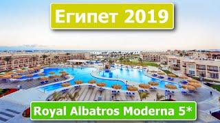 Египет 2019 Шарм Эль Шейх Отель Royal Albatros Moderna 5 Обзор и отзыв