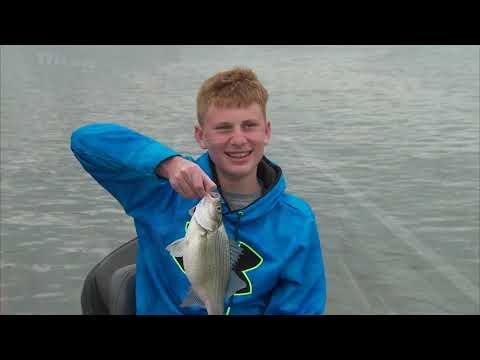 Spring Fishing And Catfish Management