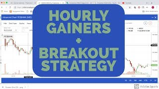 Nse Trading - Hourly Gainers Strategy with BreakOut Strategy, Intraday Strategy, Correct Entry Poin