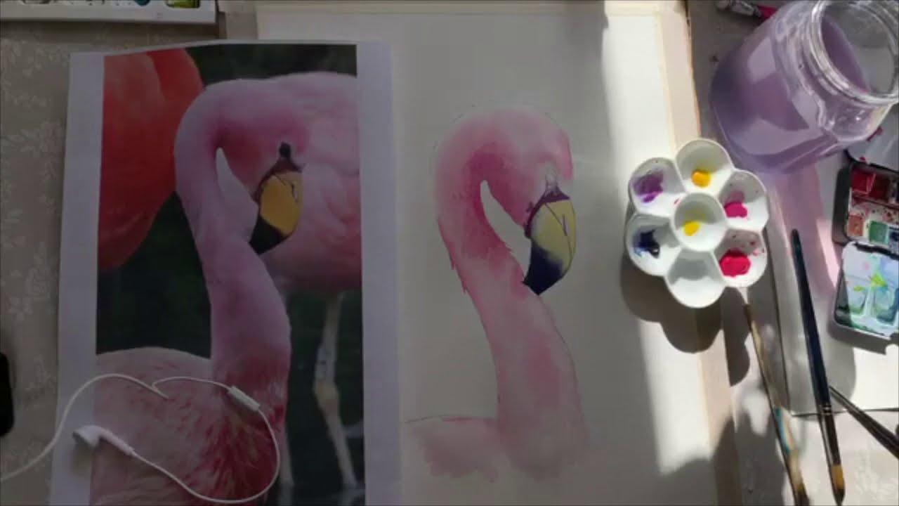 Watercolour Flamingo Tutorial