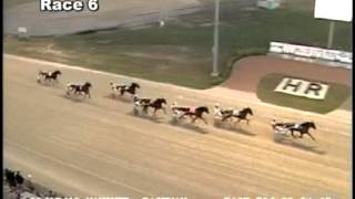 July 28, 2012, Race 06, Dream Of Glory Elimination 2, Hanover Raceway