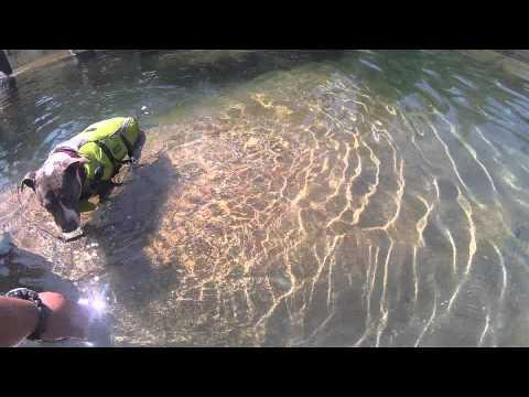 Yuba River Camping Trip Camone 2