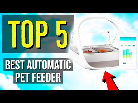 ✅ TOP 5: Best Automatic Pet Feeder 2020
